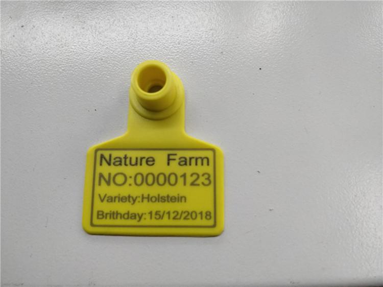 кулак тег Fiber лазер машинанын 20w белги белги (пластикалык материалдар)
